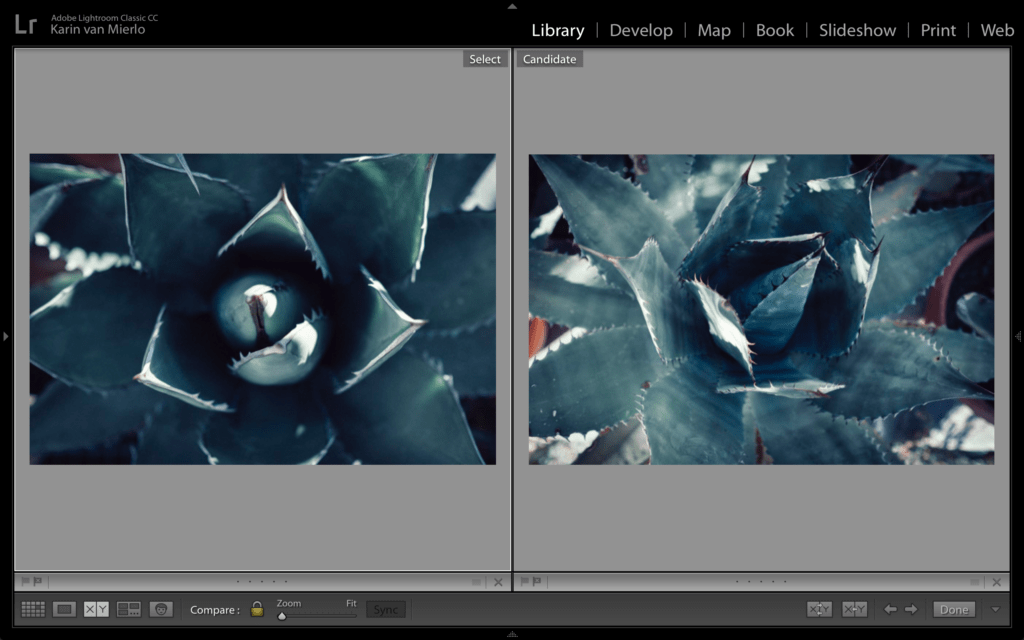 The Journey of the Pixel, Part 3: Culling Photos in Lightroom